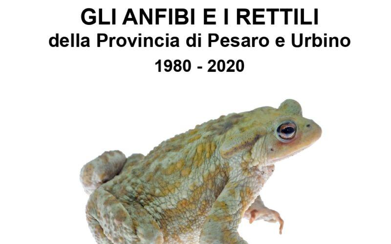 Gli anfibi e i rettili della provincia di Pesaro Urbino 1980-2020
