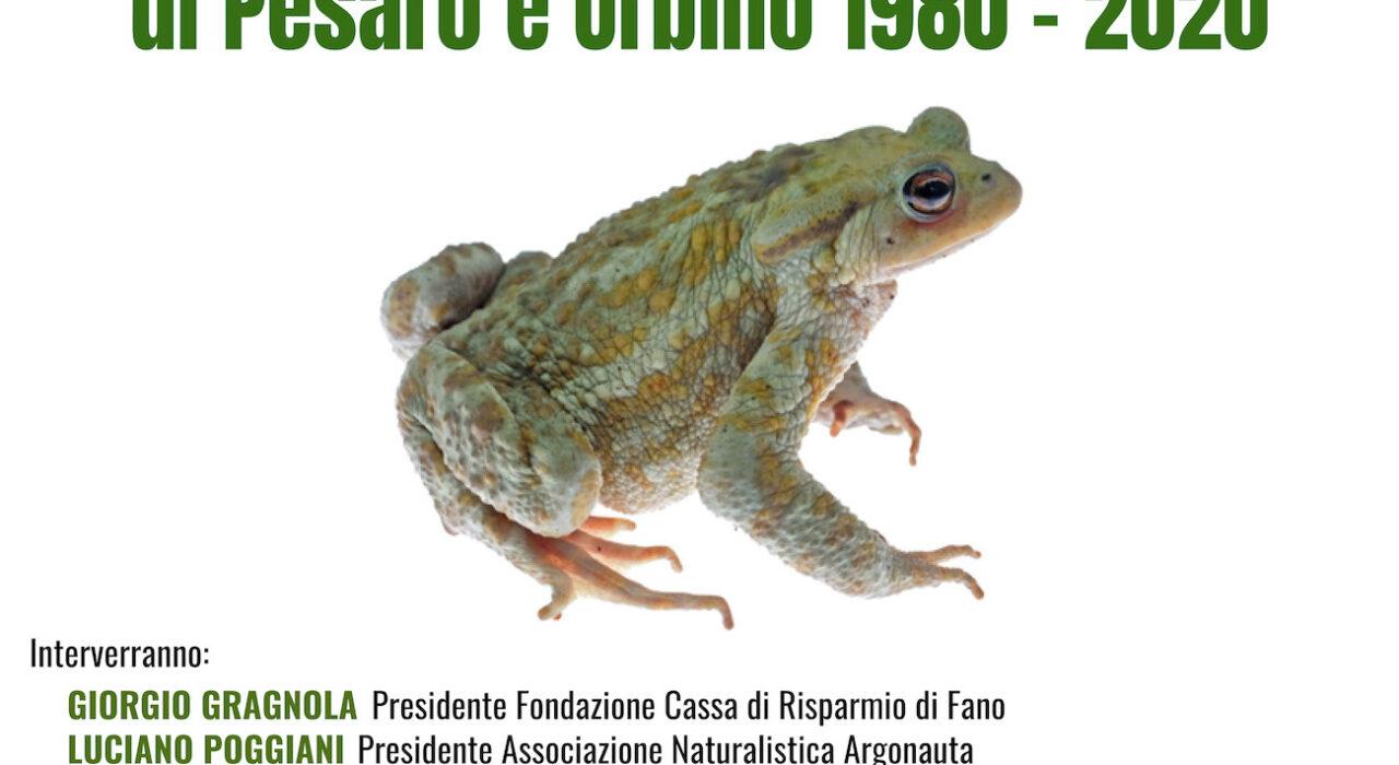 Gli anfibi i rettili della provincia di Pesaro e Urbino 1980 -2020